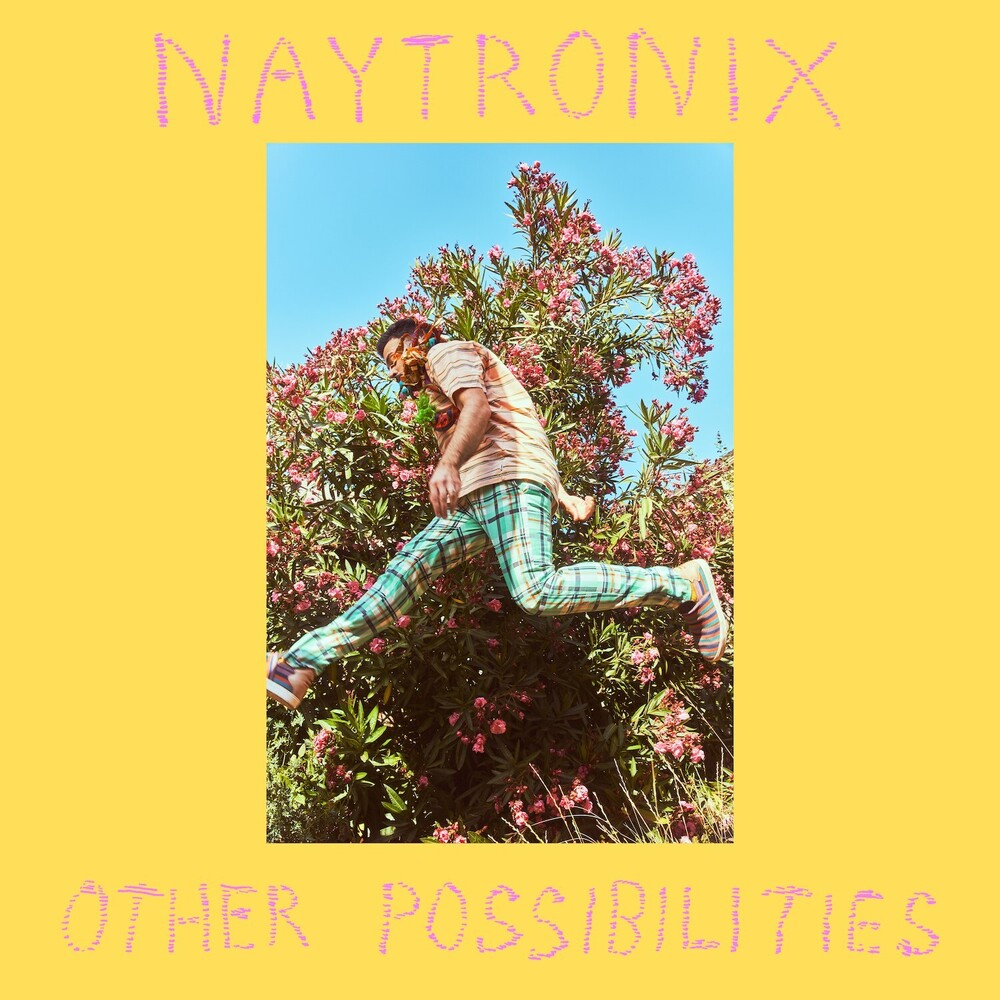 Naytronix - Other Possibilities