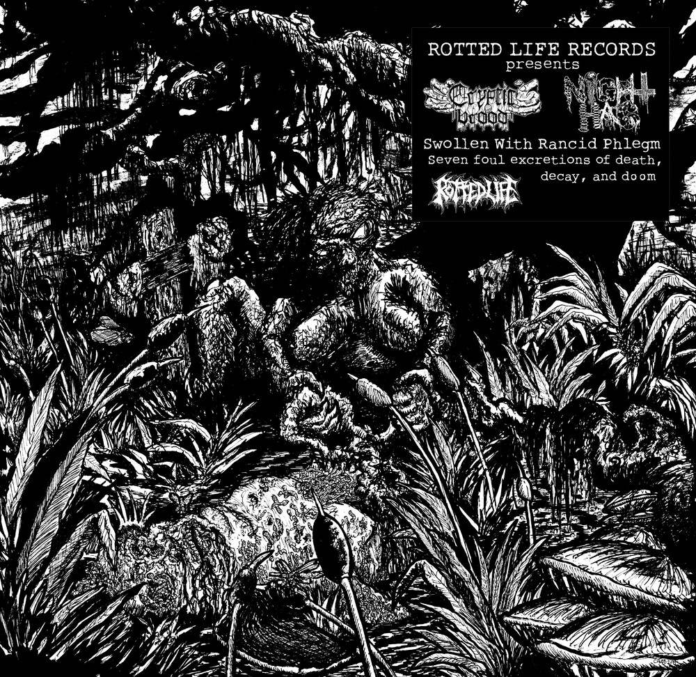 Cryptic Brood & Night Hag - Swollen With Rancid Phlegm