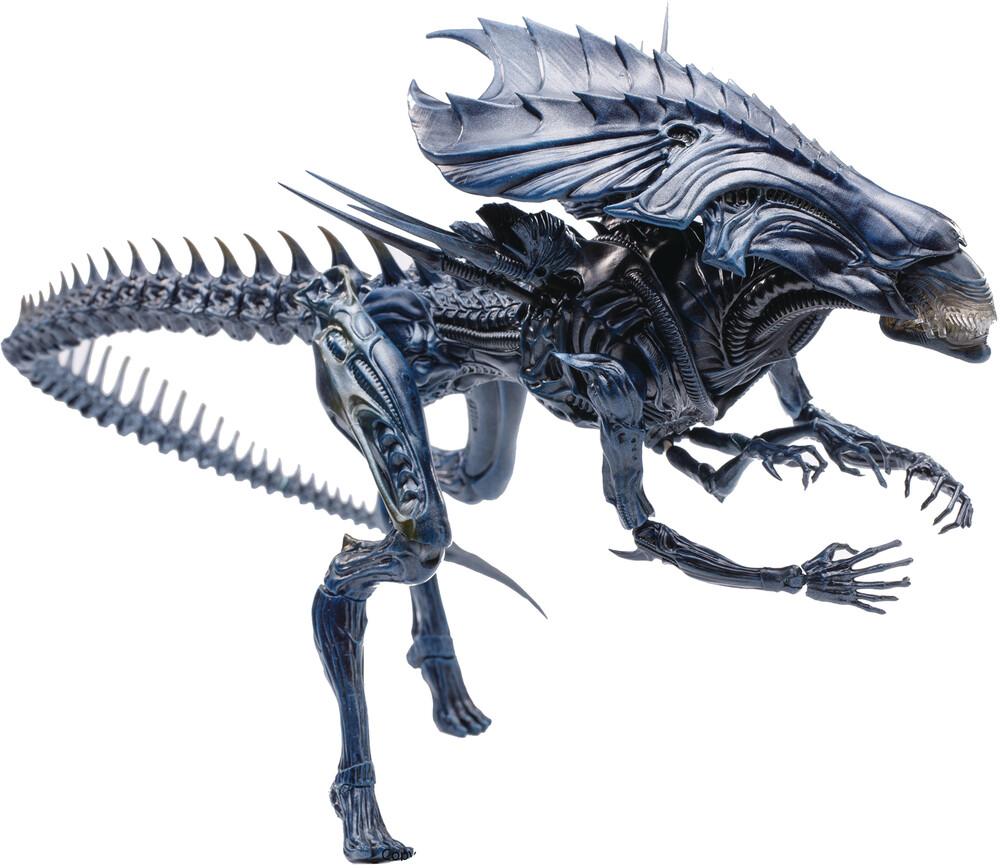 - Avp Alien Queen 1/18 Scale (Clcb) (Fig)