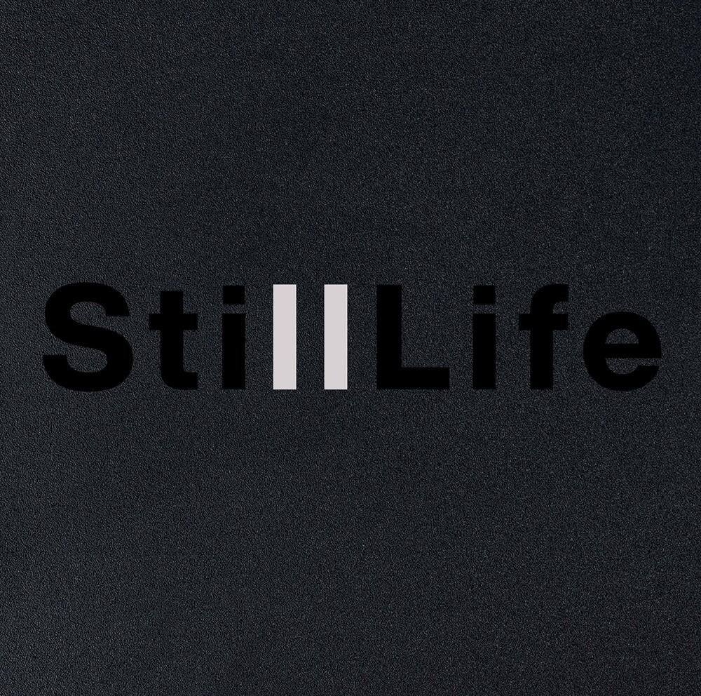 Anders Koppel - Still Life