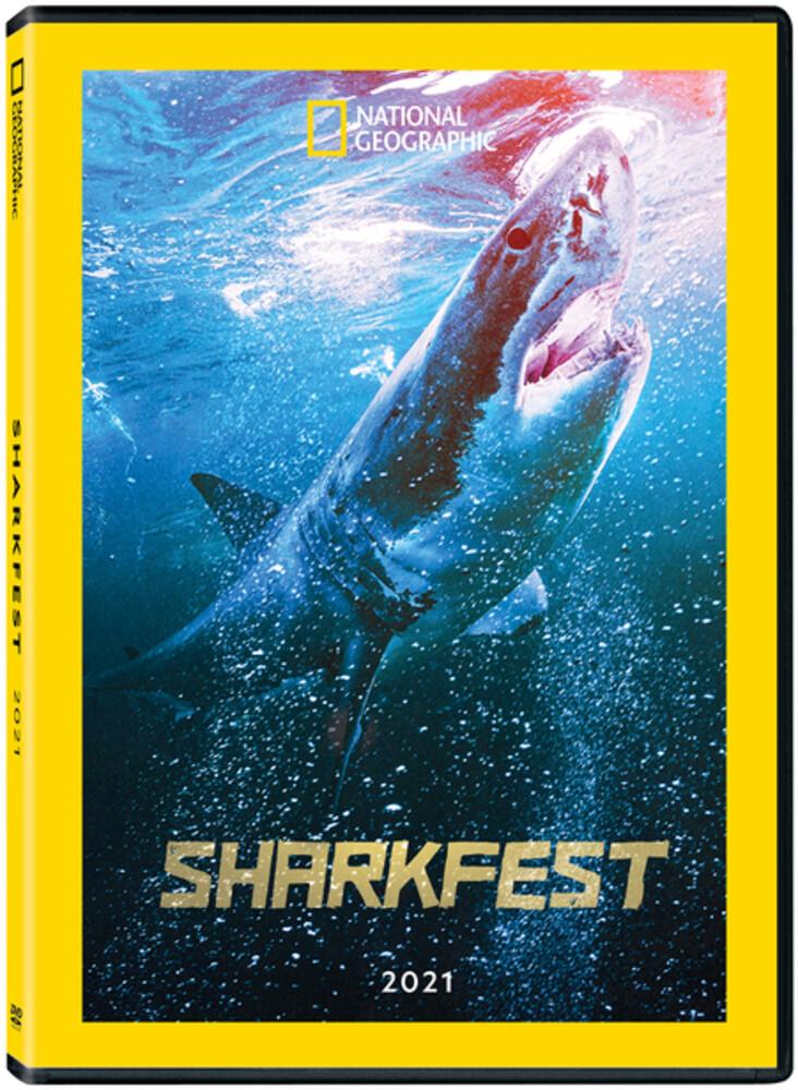Sharkfest 2021 - Sharkfest 2021