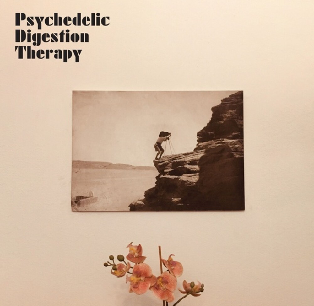 Psychedelic Digestion Therapy - Psychedelic Digestion Therapy (Aus)
