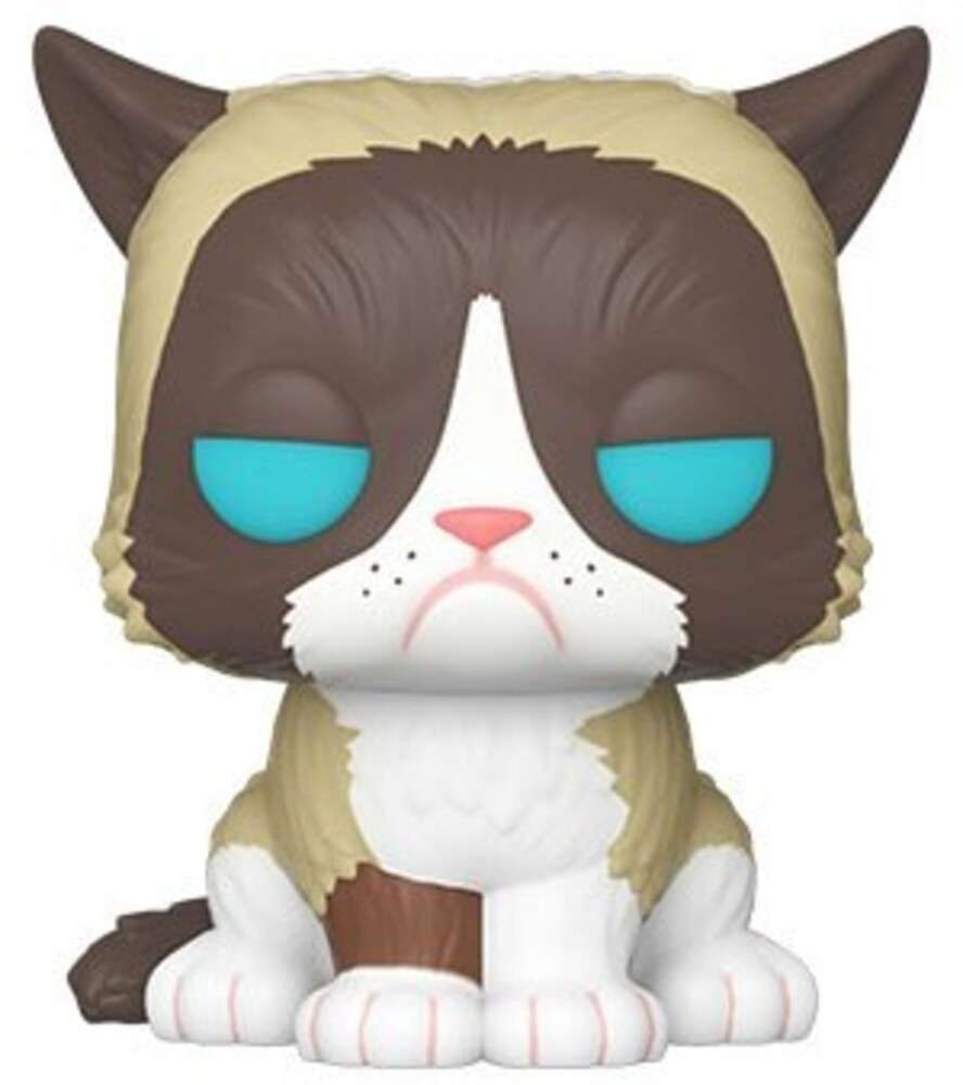Funko Pop! Icons: - FUNKO POP! ICONS: Grumpy Cat