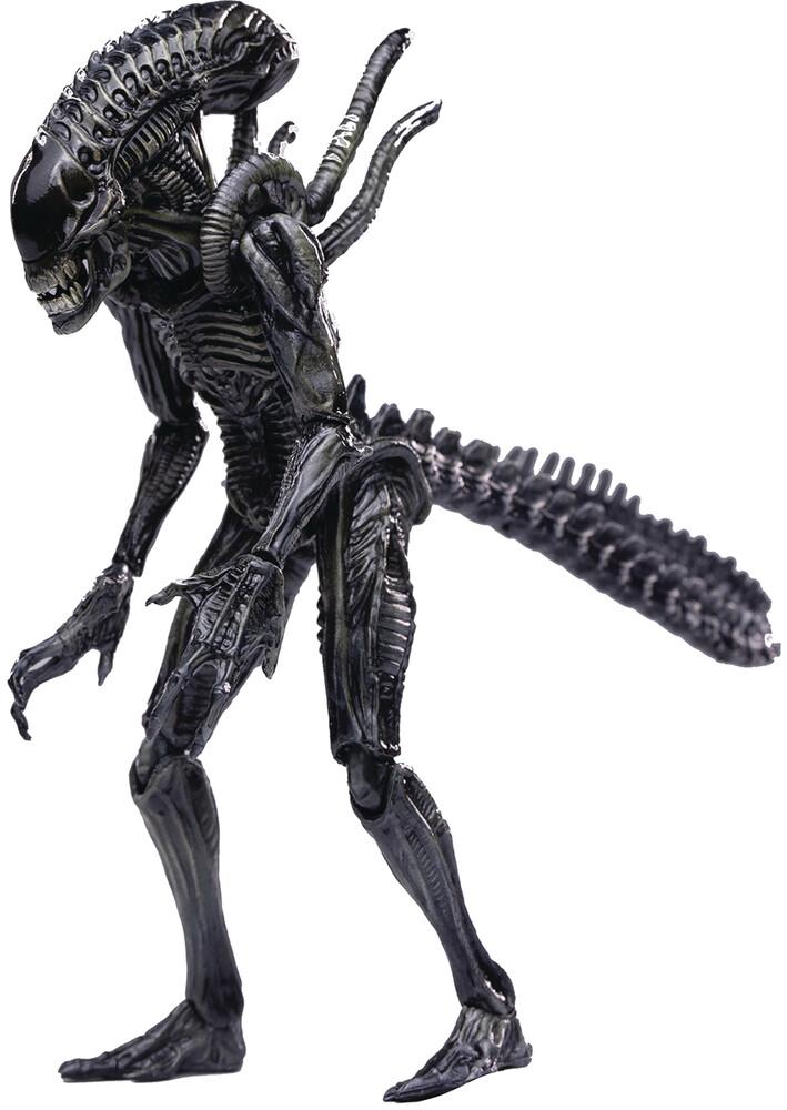 - Avpr Xeno Warrior Px 1/18 Scale Figure (Clcb)