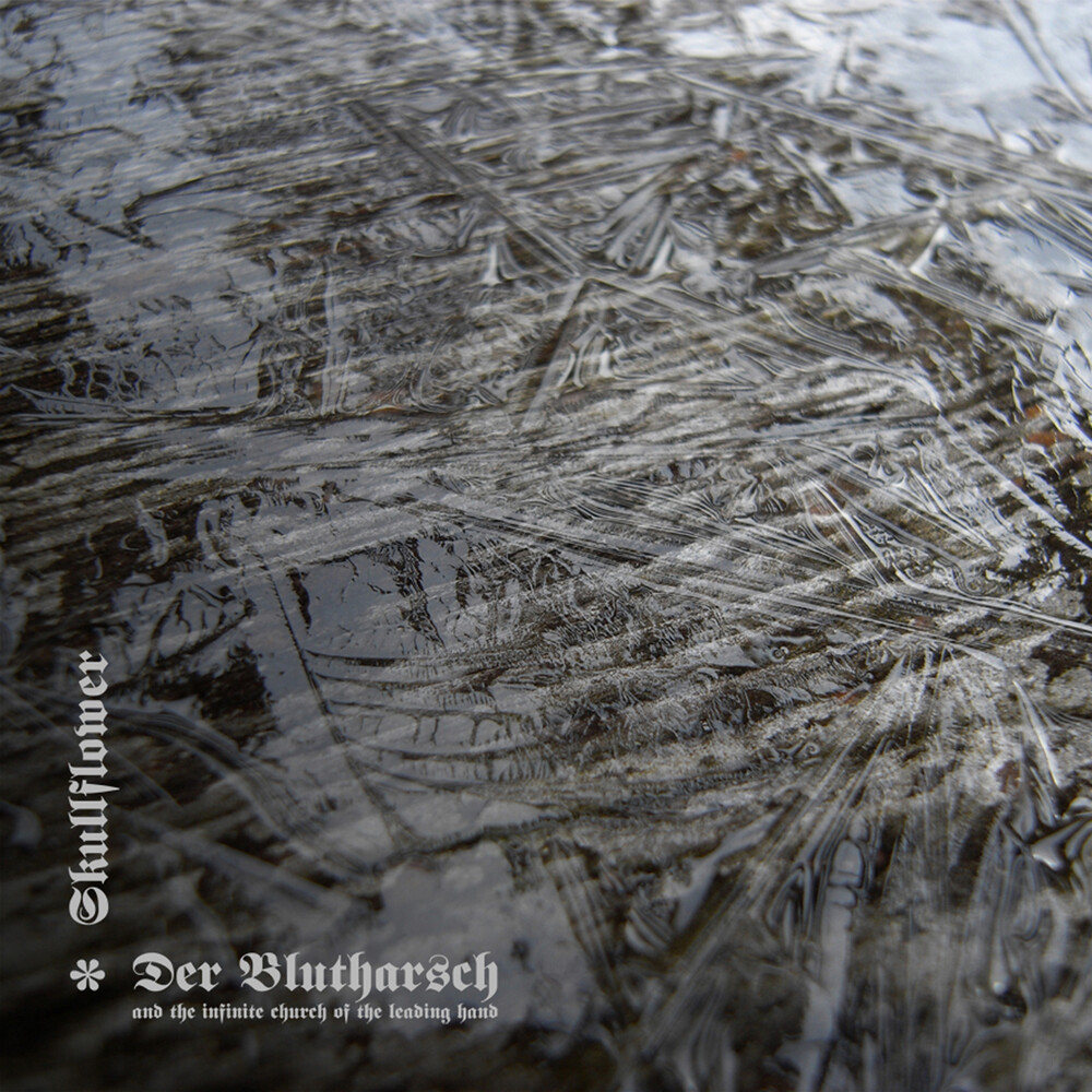 Der Blutharsch & Infinite Church Of The Leading - A Collaboration