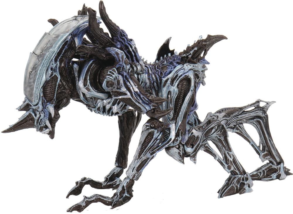- NECA - Aliens Kenner Tribute Ult Rhino Alien Version 7 Action Figure