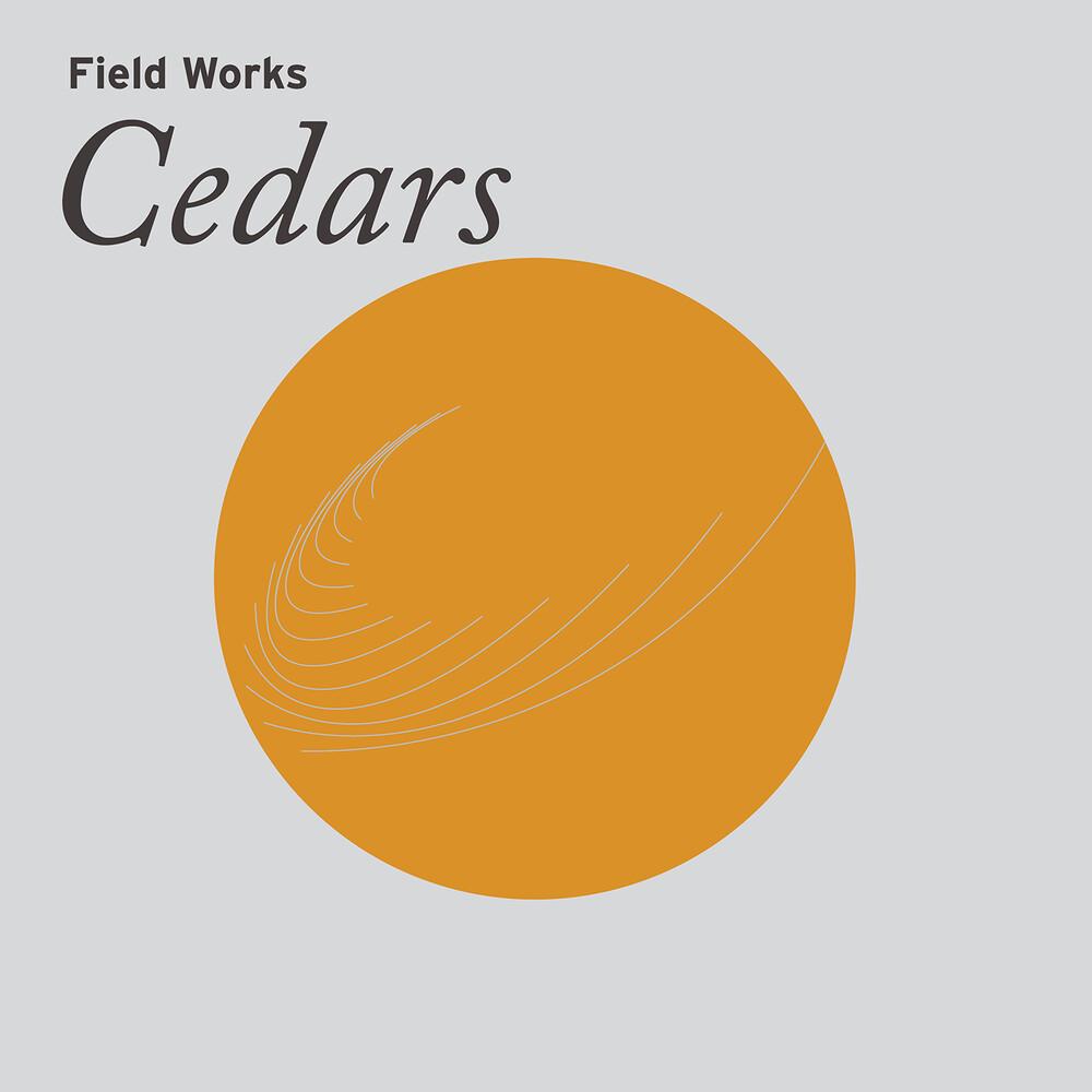 Field Works - Cedars