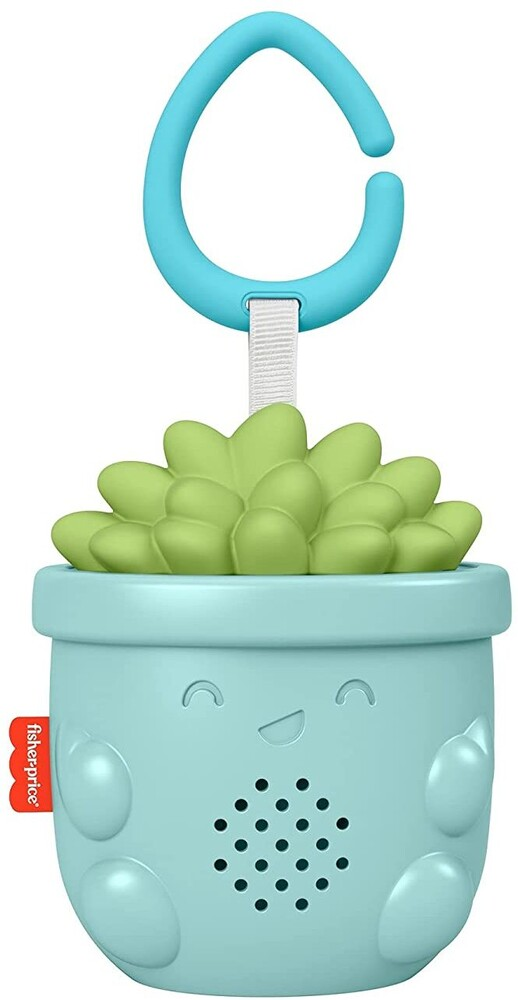 - Soothe & Go Succulent