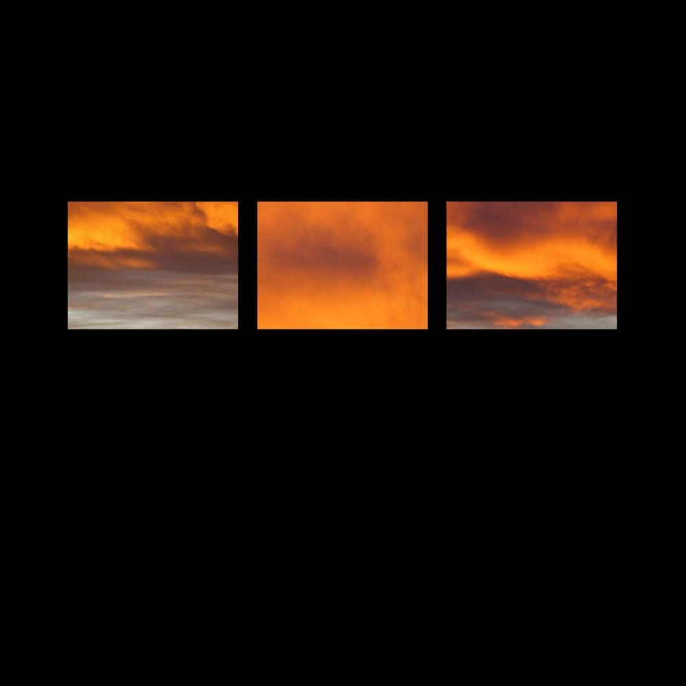 Stefano Pilia - Suncrows Fall & Tree (Uk)