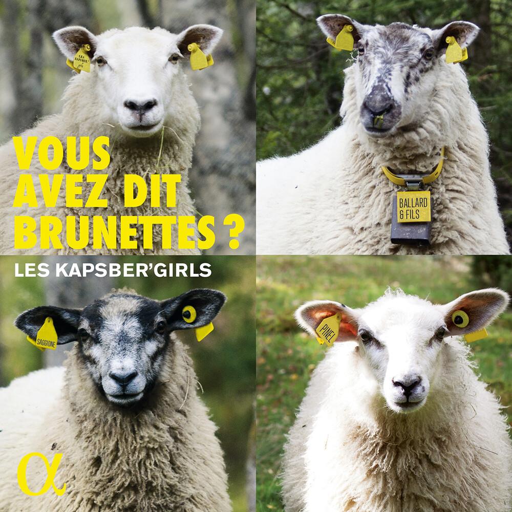 Vous Avez Dit Brunettes / Various - Vous Avez Dit Brunettes / Various