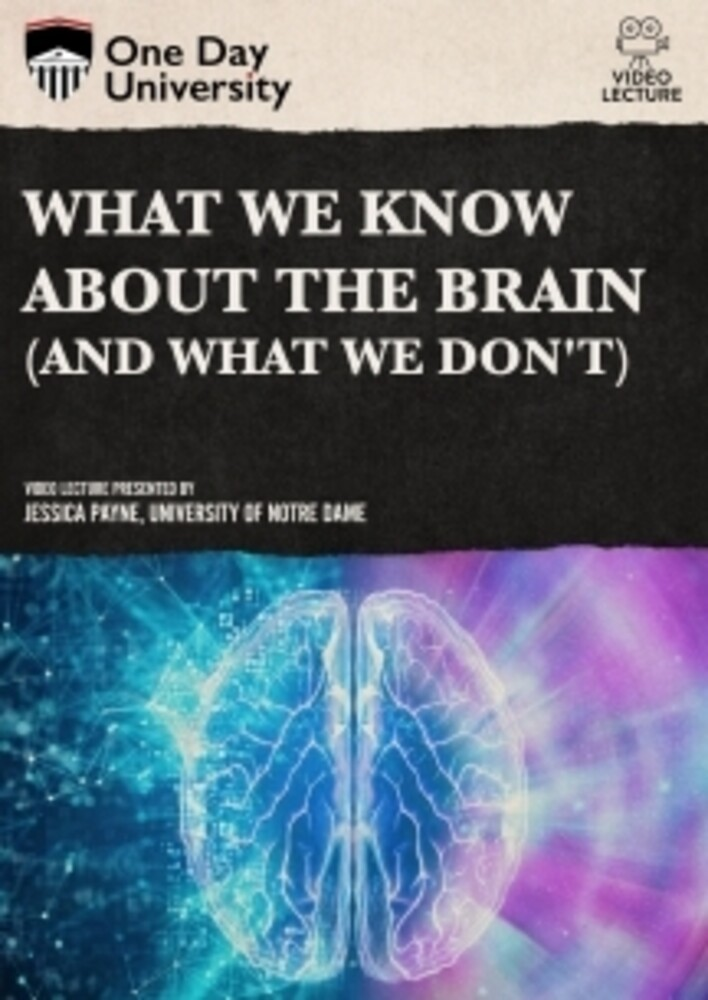 - What We Know About The Brain