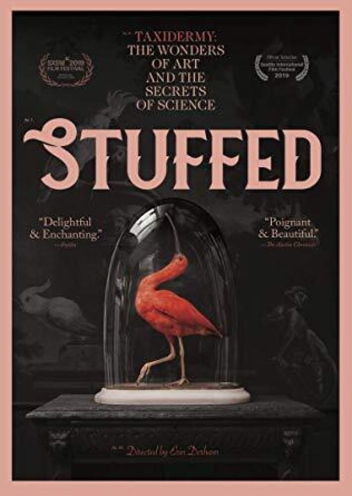 - Stuffed