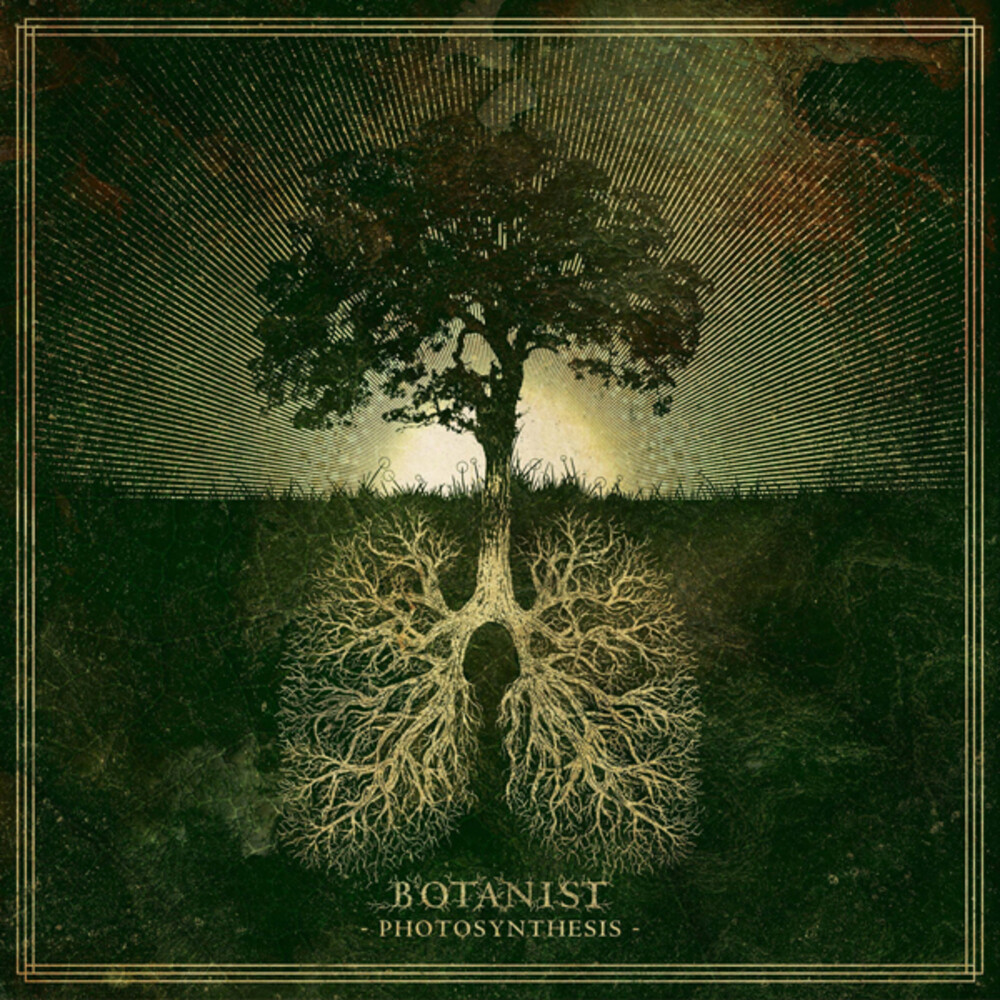 Botanist - Photosynthesis