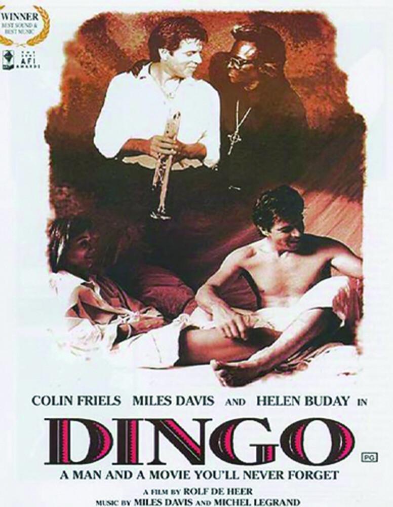 - Dingo / (Aus Ntr0)