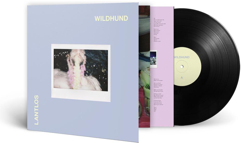 - Wildhund