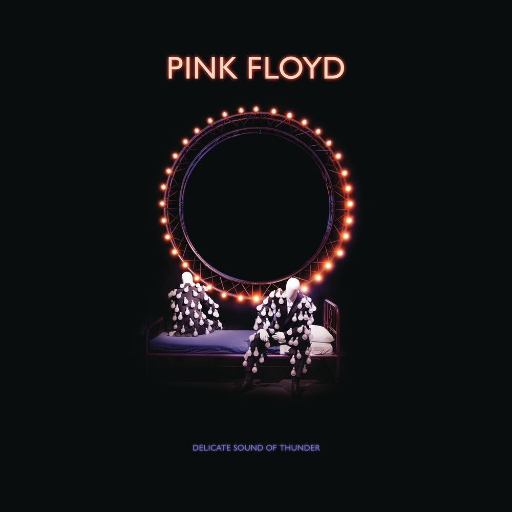 Pink Floyd - Delicate Sound Of Thunder: Remastered [Deluxe 2CD/DVD/Blu-ray Box Set]