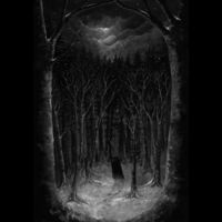 Paysage Dhiver - Im Wald [Digipak]