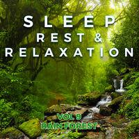 Sleep Rest & Relaxation: Vol 9 Rain Forest / Var - Sleep Rest & Relaxation: Vol 9 Rain Forest (Various Artists)
