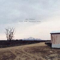 Will Johnson - Wire Mountain [LP]