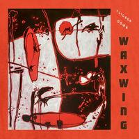 Waxwing - Flicker Down