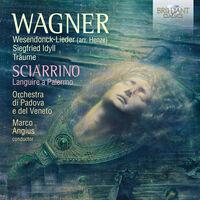 Sciarrino / Orchestra Di Padova E Del Veneto - Works