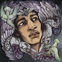 Best Of James Marshall Hendrix (Redux) / Various - Best of James Marshall Hendrix (Redux) / Various