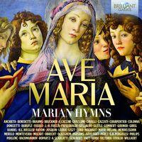 Ave Maria / Marian Hymns / Various Box - Ave Maria / Marian Hymns