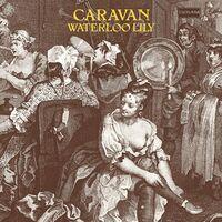 Caravan - Waterloo Lily (Uk)