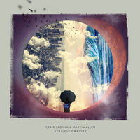 Craig Padilla - Strange Gravity