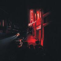 Andy Shauf - The Neon Skyline [LP]