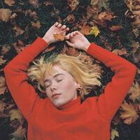 girl in red - We Fell In Love In October (Brwn) [Colored Vinyl] (Org)