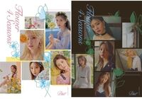 Dia - Flower 4 Seasons (Random Cover) (Stic) [With Booklet] (Phot)
