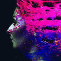 Steven Wilson - Hand.Cannot.Erase