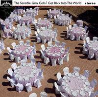 Sensible Gray Cells - Get Back Into The World