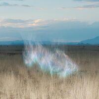 Hollie Kenniff - The Gathering Dawn [LP]