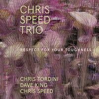 Chris Speed - Respect for Your Toughness