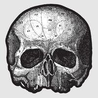 Black Label Society - Black Pearl (10in) (Pict)