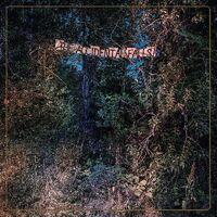Eyelids - The Accidental Falls [LP]