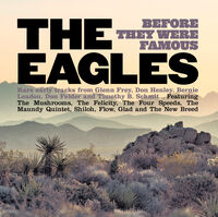 Eagles Before They Were Famous / Various - The Eagles Before They Were Famous / Various