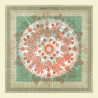 Trampled By Turtles - Life Is Good On The Open Road [Indie Exclusive Limited Edition Yellow LP]