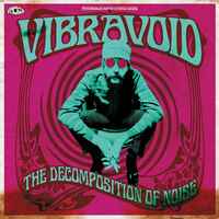 Vibravoid - Decomposition Of Noise