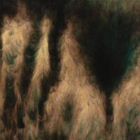 William Basinski - Lamentations [Indie Exclusive] (Pearlescent Bronze Vinyl)