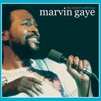 Marvin Gaye - Concert Anthology [Remastered]