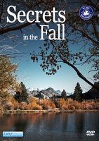 Secrets in the Fall - Secrets In The Fall