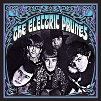 Electric Prunes - Stockholm 67