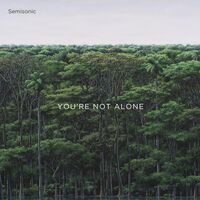 Semisonic - You're Not Alone EP