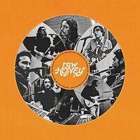 Drugdealer - Raw Honey [LP]