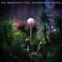 Emil Brandqvist - Entering The Woods (Dig)