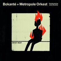 Bokanté - What Heat