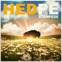 (Hed) P.E. - Stampede